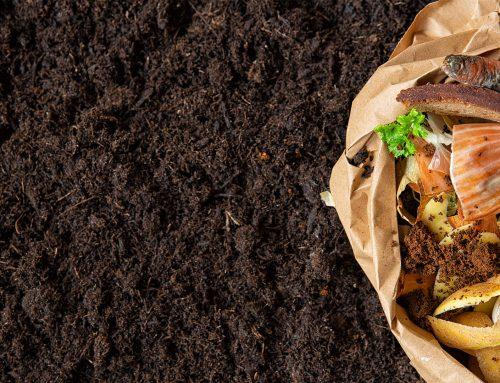¿Como preparar compost en casa?